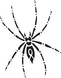 Traumdeutung Spinne
