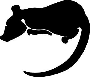 Traumdeutung-Ratte