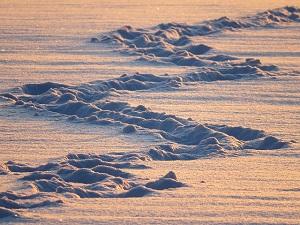 Traumdeutung-Schnee